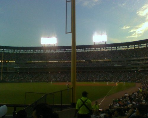 view at the cell.jpg